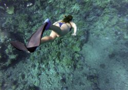 Svømmefødder fra Aquaspeed - perfekt til snorkling og svømmetræning