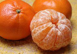 Sund virksomhed med økologisk frugtordning